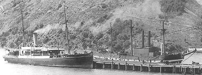 The Government Steamer Tutanekai